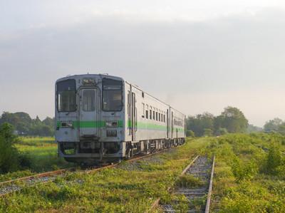 Pp1350837